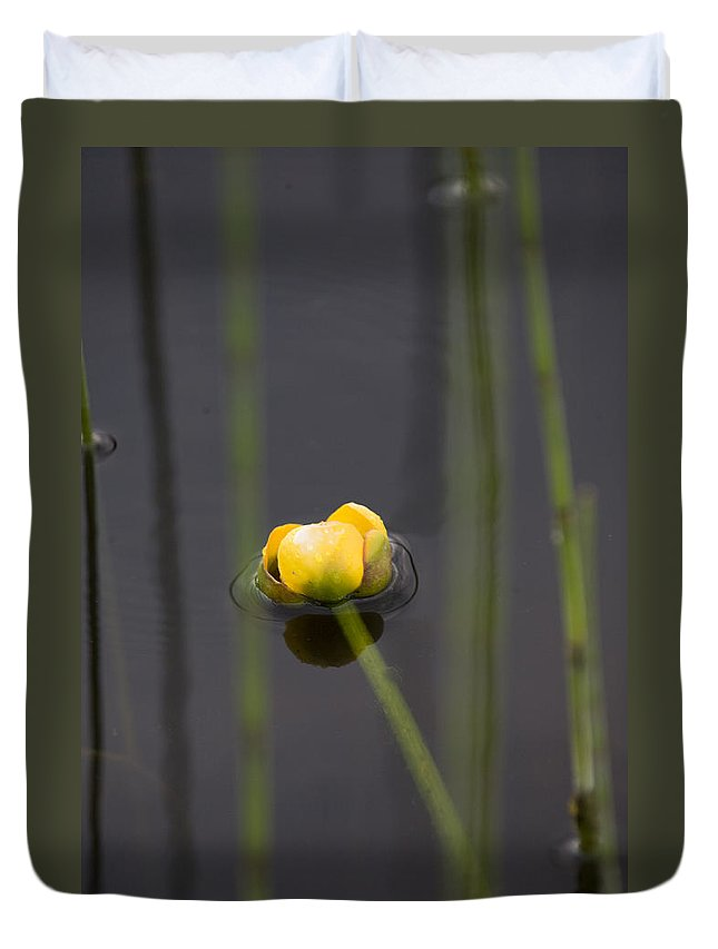 Water Duvet Cover featuring the photograph Water Lily by Mark Duffy