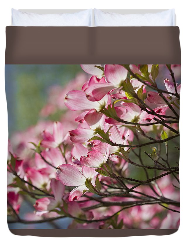 Pink Dogwood Duvet Cover featuring the photograph Waves Of Pink Light by Kathy Clark