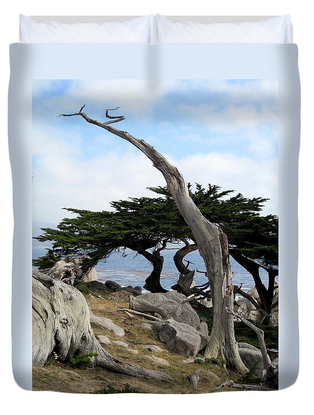 Tree Duvet Cover featuring the photograph Weathered Tree On California Coast by Carla Parris