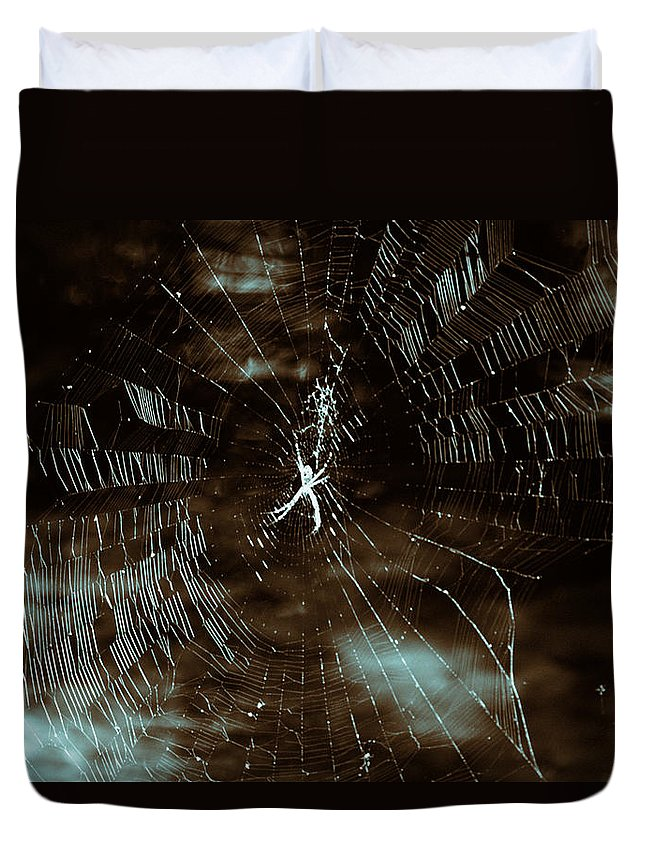 Spider Web-stream Duvet Cover featuring the photograph Web Glitter by Douglas Barnard