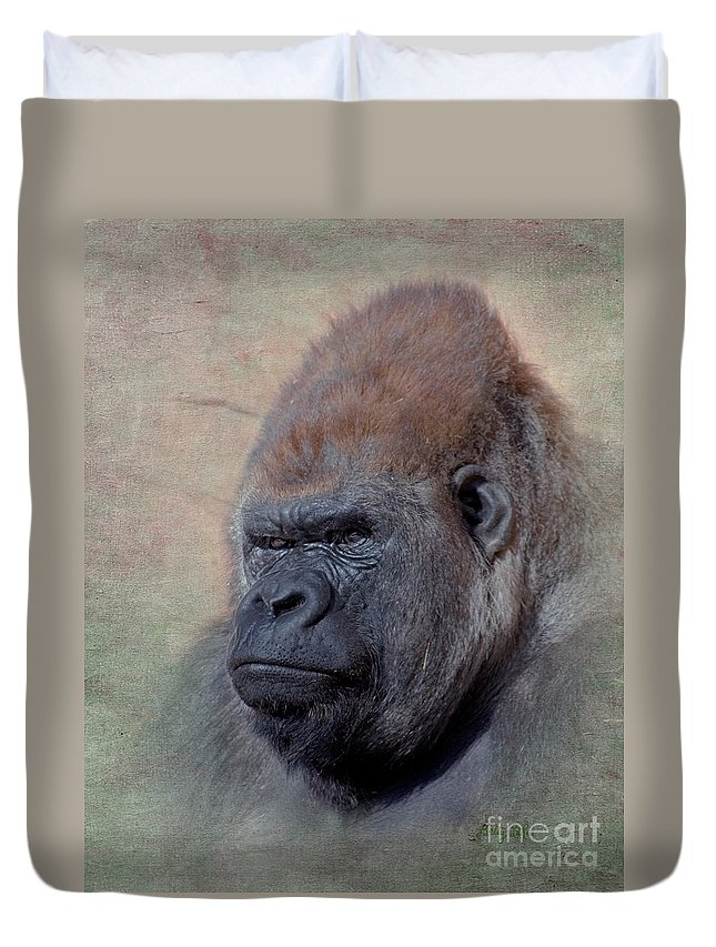 Western Lowland Gorilla Duvet Cover featuring the photograph Western Lowland Gorilla by Betty LaRue
