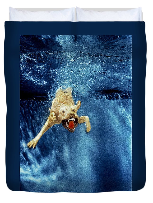 Dog Duvet Cover featuring the photograph Wet Paws by Jill Reger