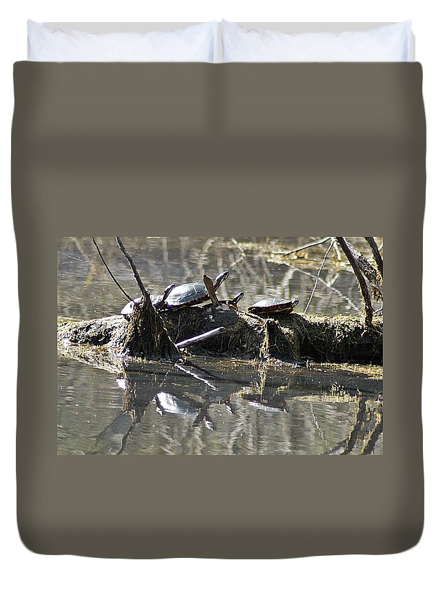 Horn Pond Duvet Cover featuring the photograph Where Is The Sunblock by Joe Faherty