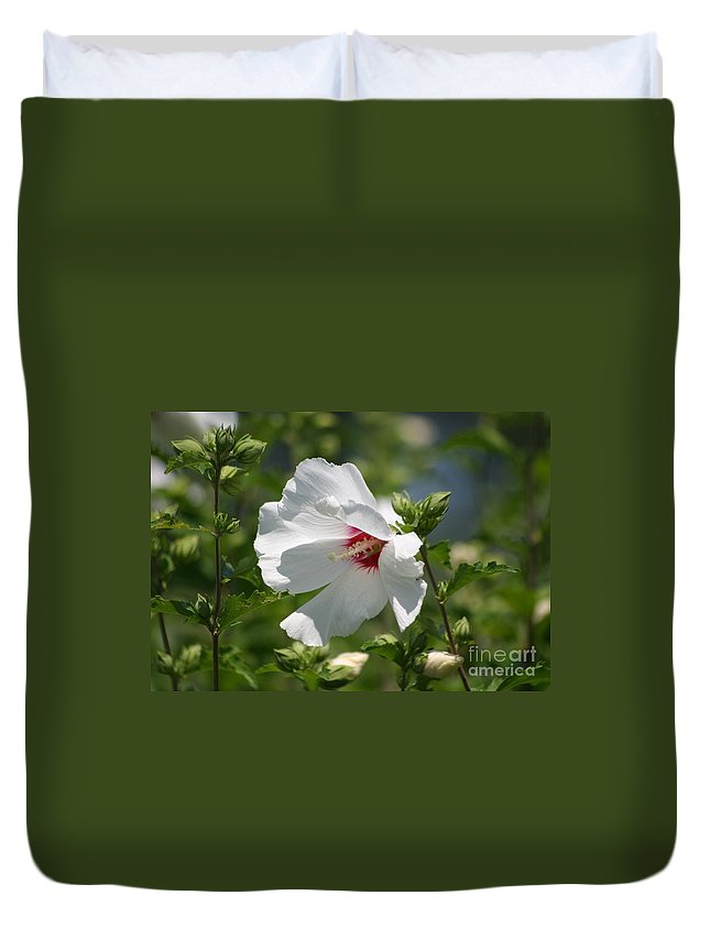 Floral Duvet Cover featuring the photograph White Linen by Living Color Photography Lorraine Lynch