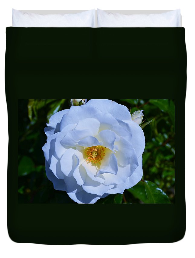 Flower Rose White Green Nature Etc Duvet Cover featuring the photograph White Rose by Saifon Anaya