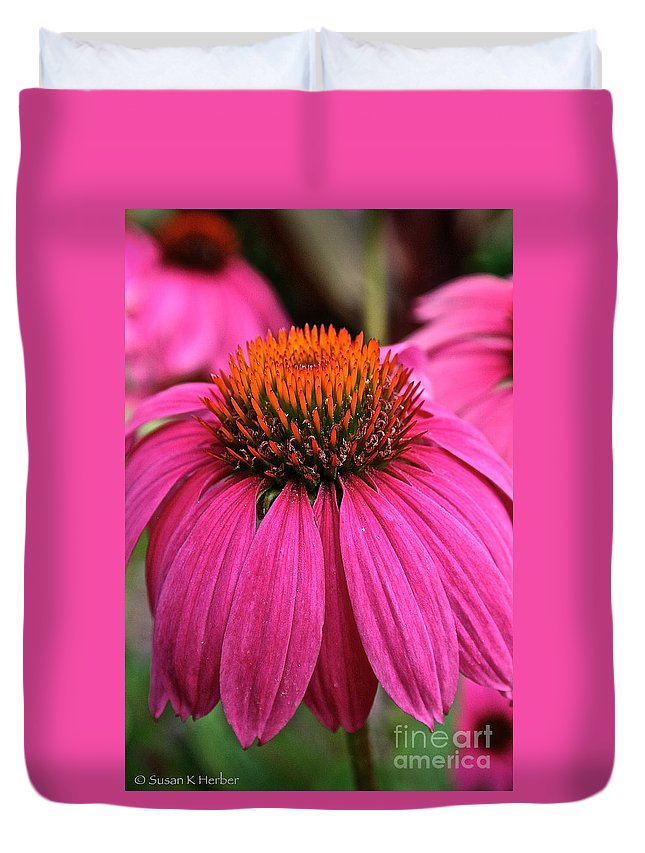 Plant Duvet Cover featuring the photograph Wild Berry Purple Cone Flower by Susan Herber