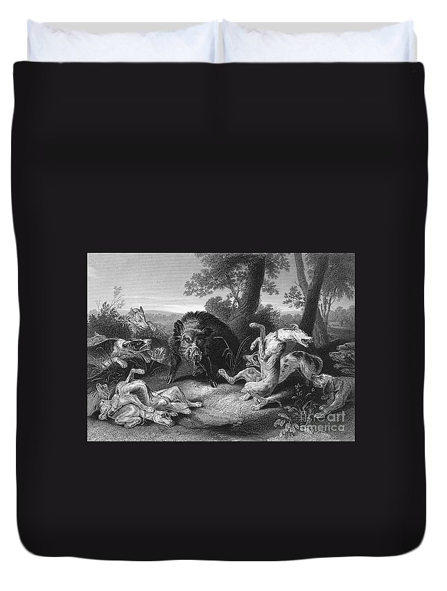 19th Century Duvet Cover featuring the photograph Wild Boar Hunt by Granger