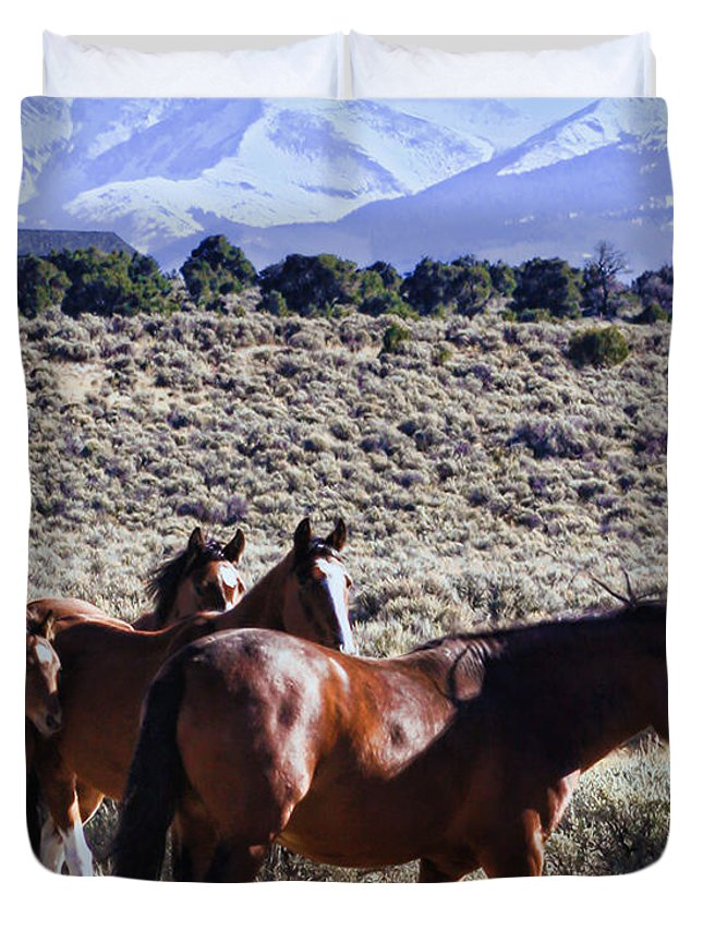Horse Duvet Cover featuring the photograph Wild Bunch by Terry Fiala