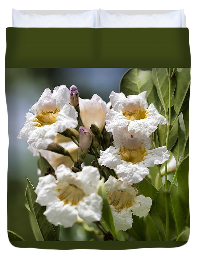Wild Flowers Duvet Cover featuring the photograph Wild Flowers by Douglas Barnard