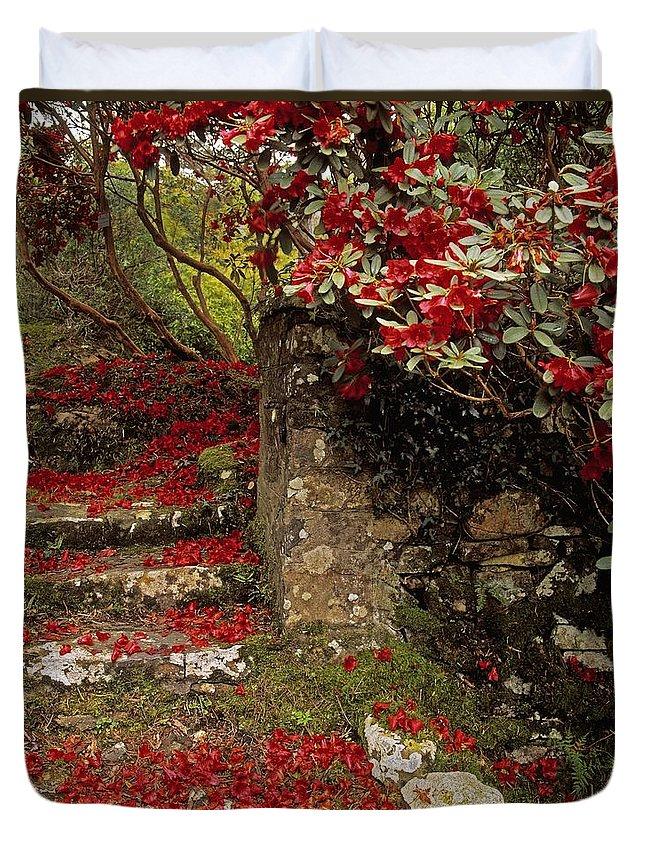 Co Down Duvet Cover featuring the photograph Wild Garden, Rowallane Garden, Co Down by The Irish Image Collection