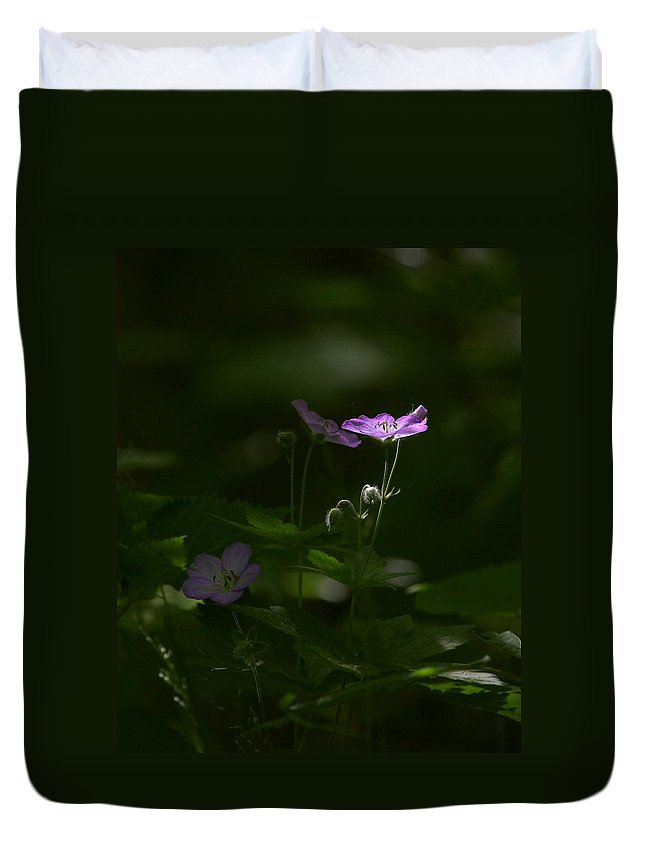 Wild Geranium Duvet Cover featuring the photograph Wild Geranium In Woodland Light by Michael Dougherty
