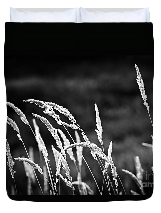 Grass Duvet Cover featuring the photograph Wild Grass by Elena Elisseeva