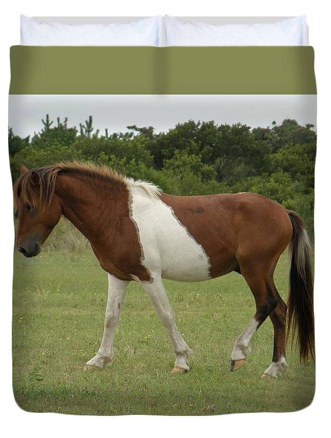Pony Duvet Cover featuring the photograph Wild Pony On Assateague Island Maryland by Sven Migot