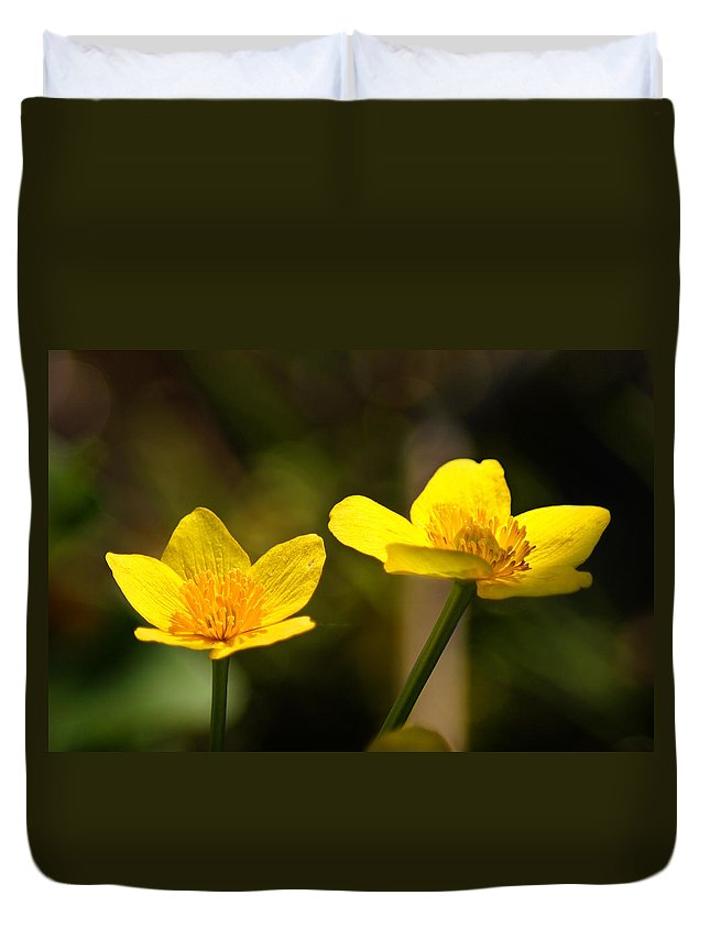 Bill Pevlor Duvet Cover featuring the photograph Wild Yellows by Bill Pevlor
