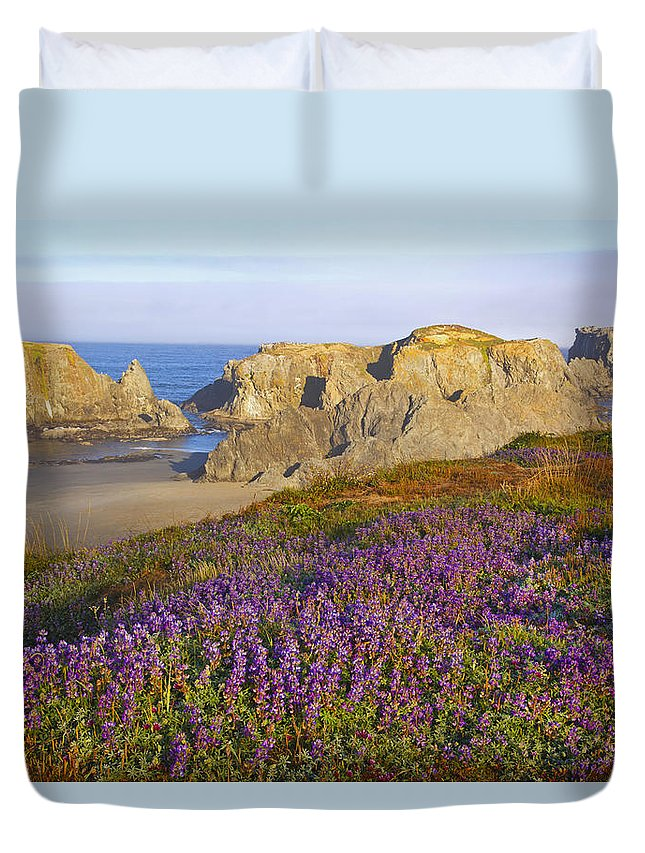 Beauty In Nature Duvet Cover featuring the photograph Wildflowers And Rock Formations Along by Craig Tuttle
