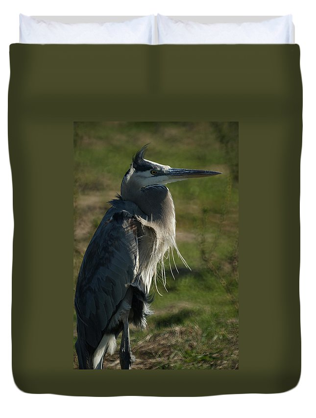 Animals Duvet Cover featuring the photograph Wind Blown Great Blue Heron by Ernie Echols