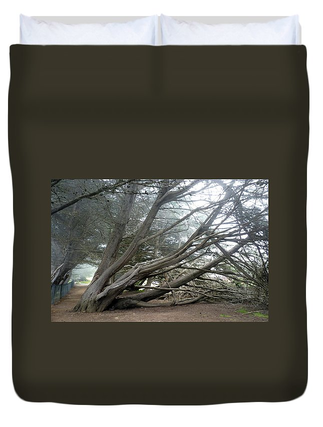 Tree Duvet Cover featuring the photograph Windswept by Carla Parris