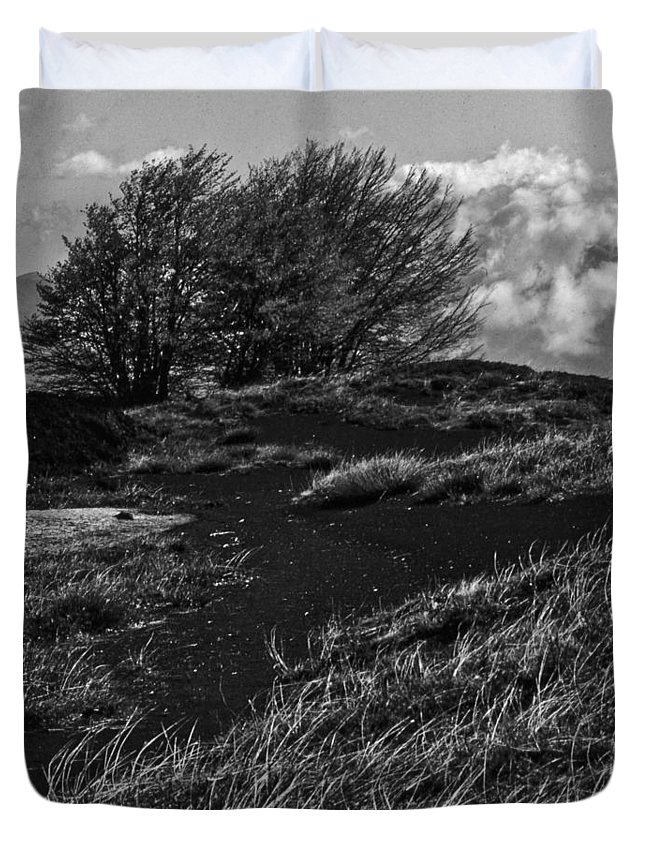 Landscape Duvet Cover featuring the photograph Windy Hill by Michele Mule'