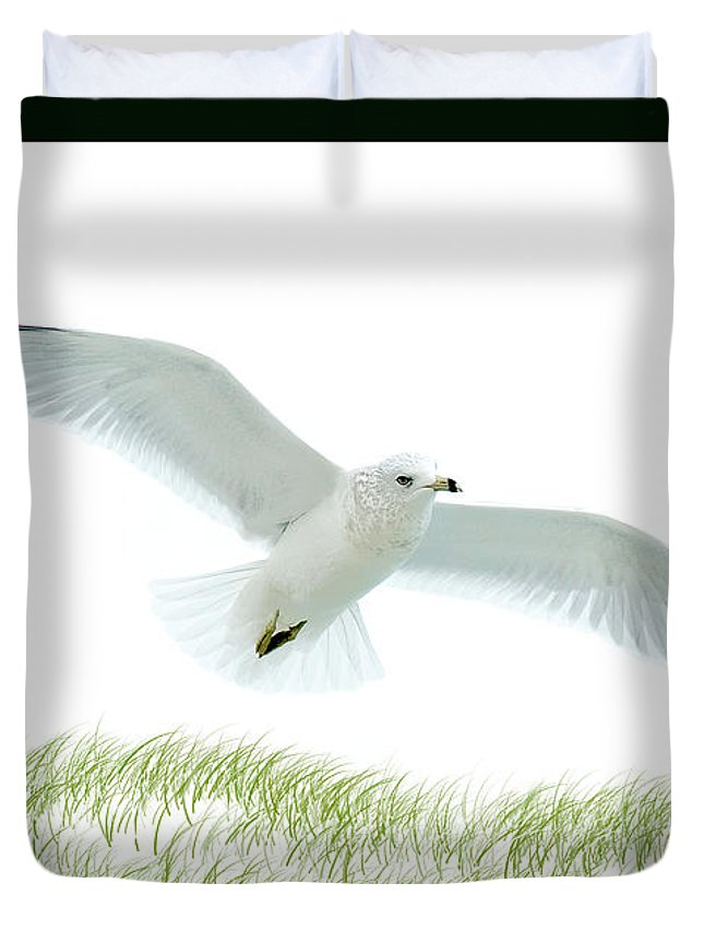Seagull Duvet Cover featuring the photograph Wings by Greg Fortier