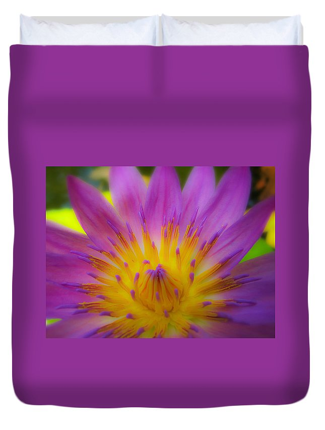 Wishing On A Star Duvet Cover featuring the photograph Wishing On A Star 3 by Rachel Cohen