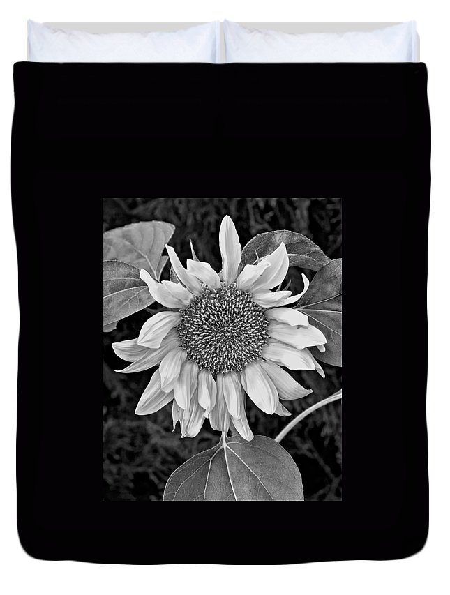 Flowers Duvet Cover featuring the photograph Wistful One Monochrome by Steve Harrington