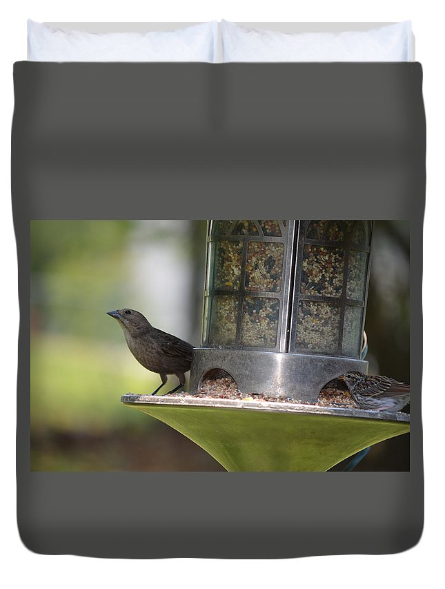 Birds Duvet Cover featuring the photograph With A Song In My Heart by Maria Urso