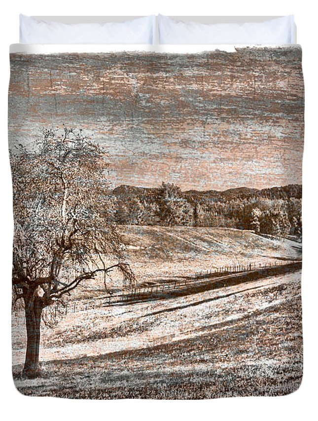Appalachia Duvet Cover featuring the photograph Wizened Tree by Debra and Dave Vanderlaan