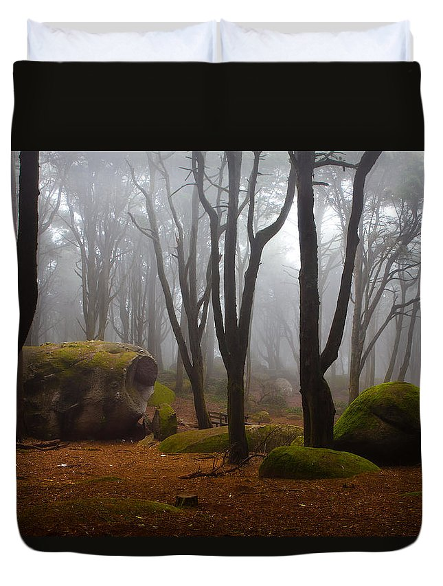 Forest Duvet Cover featuring the photograph Wonderland by Jorge Maia