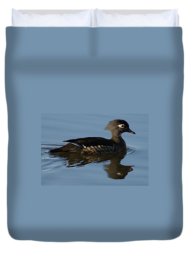 Wood Duvet Cover featuring the photograph Wood Duck I by Joe Faherty