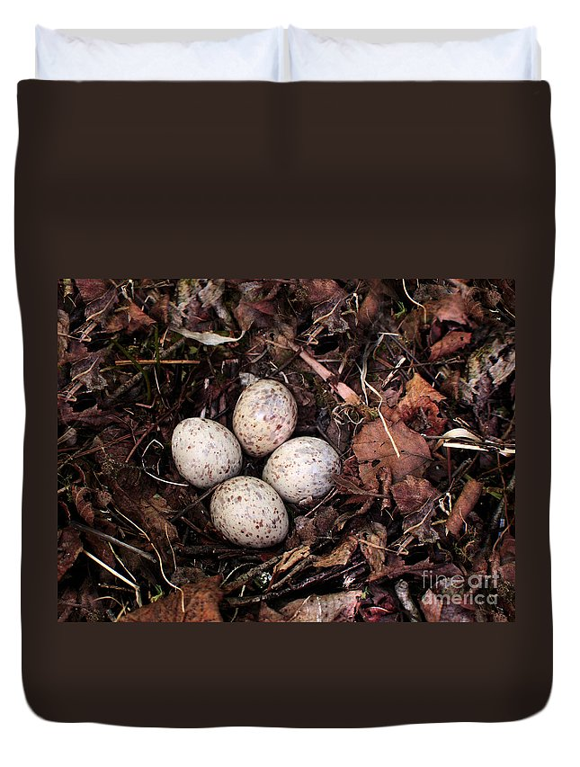 Woodcock Duvet Cover featuring the photograph Woodcock Nest And Eggs by Angie Rea