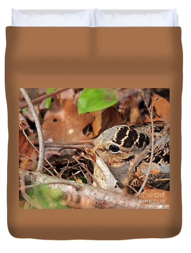 Woodcock Duvet Cover featuring the photograph Woodcock Nesting Side View by Lloyd Alexander
