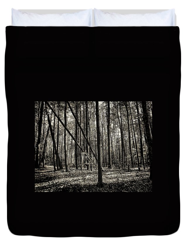 Woodland Duvet Cover featuring the photograph Woodland by Lourry Legarde