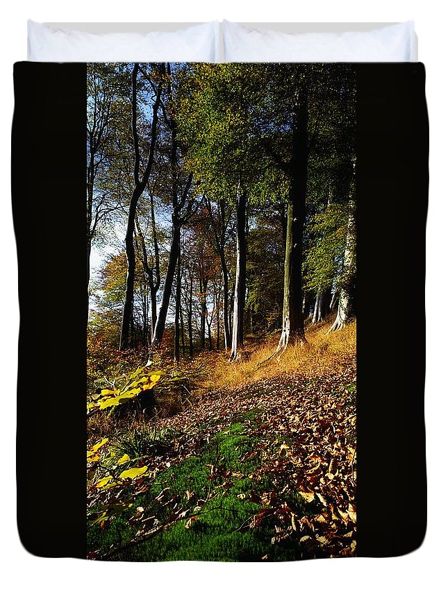 Color Image Duvet Cover featuring the photograph Woods During Autumn by The Irish Image Collection