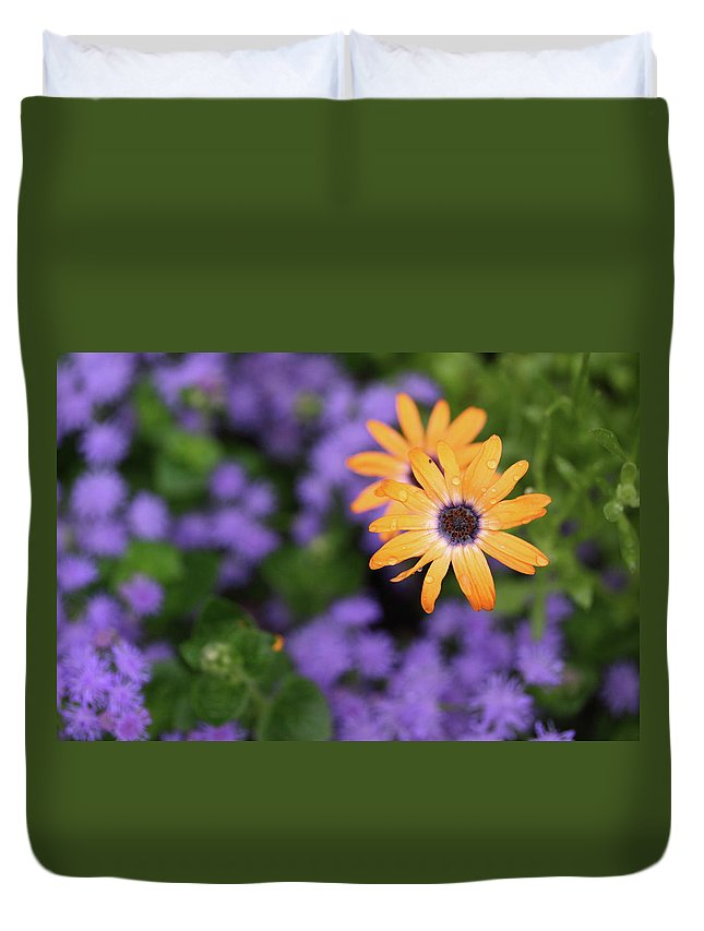 Flowers Duvet Cover featuring the photograph Yellow And Purple by Rick Berk