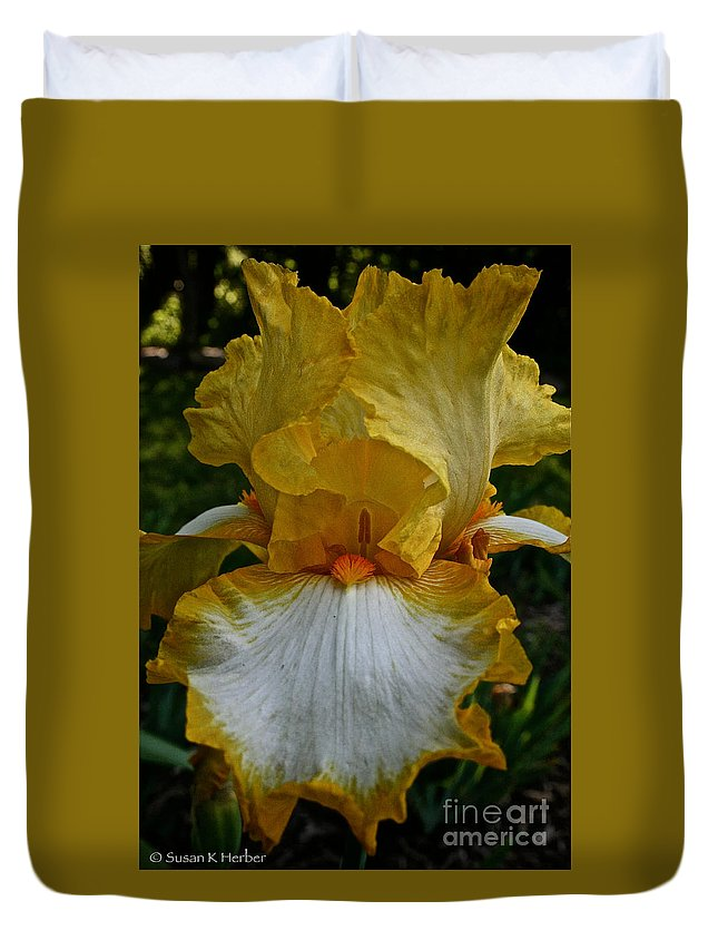 Plant Duvet Cover featuring the photograph Yellow And White Iris by Susan Herber