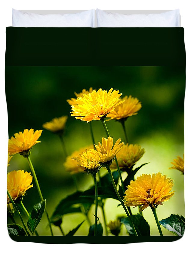 Flowers Duvet Cover featuring the photograph Yellow Daisies by Rich Franco