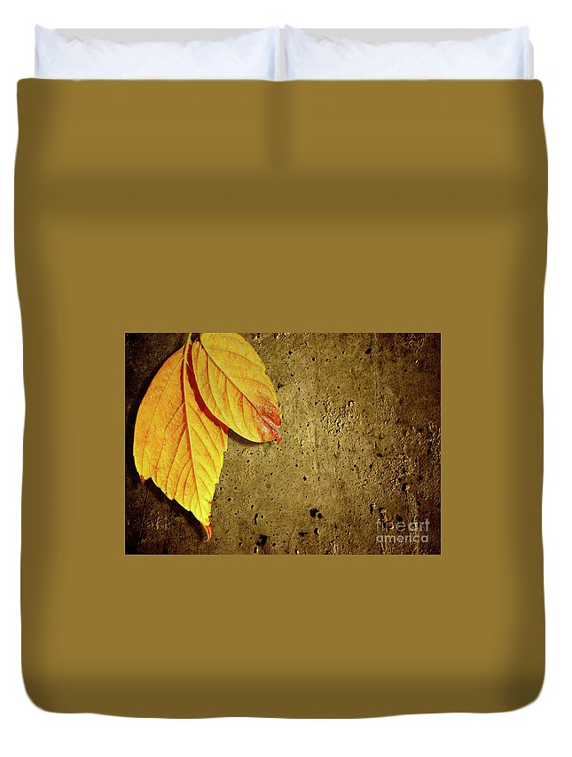 Aged Duvet Cover featuring the photograph Yellow Fall Leafs by Carlos Caetano