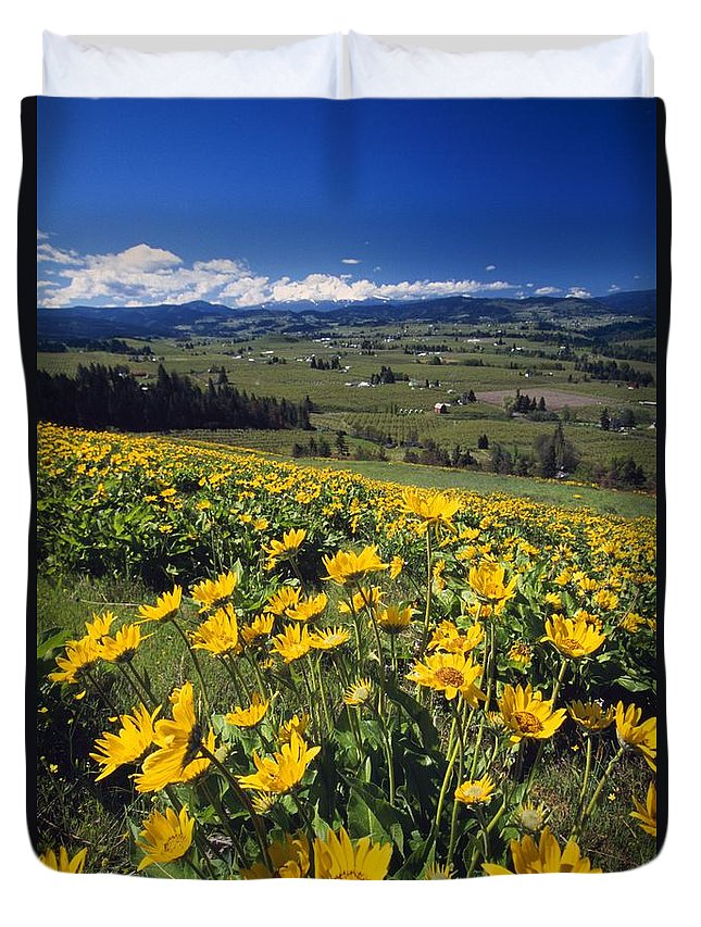 Outdoors Duvet Cover featuring the photograph Yellow Flowers Blooming, Hood River by Natural Selection Craig Tuttle