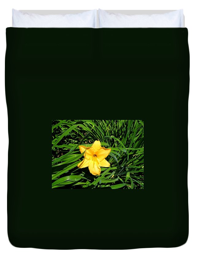 Lily Duvet Cover featuring the photograph Yellow Lily by April Patterson