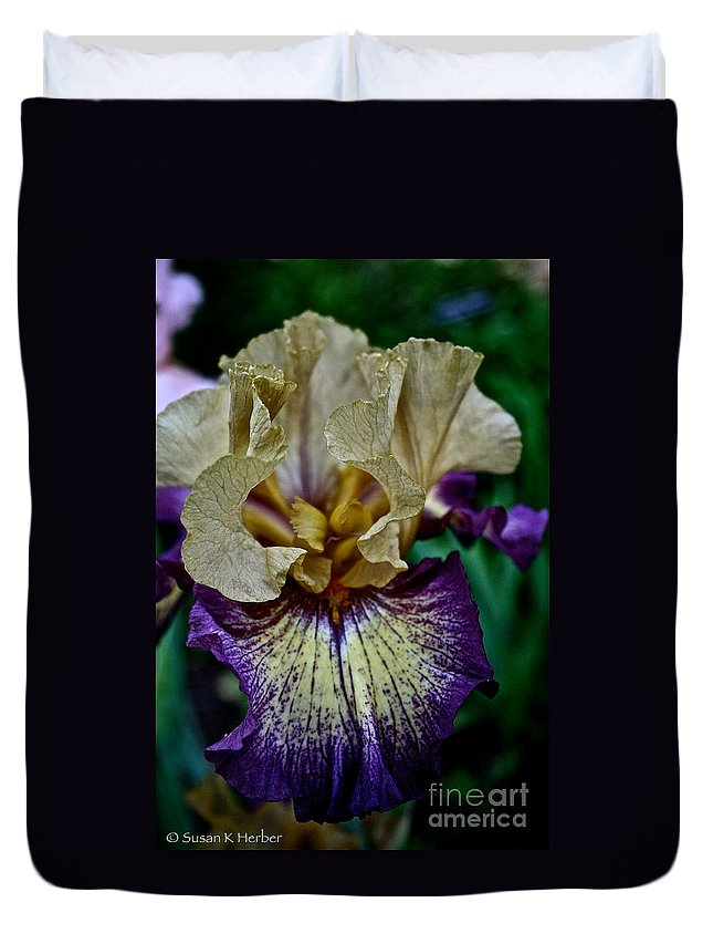 Plant Duvet Cover featuring the photograph Yellow Purple Iris by Susan Herber