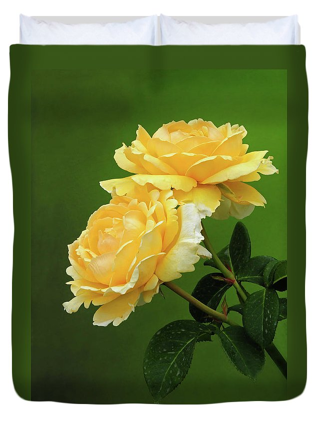 Rose Duvet Cover featuring the photograph Yellow Rose by Dave Mills