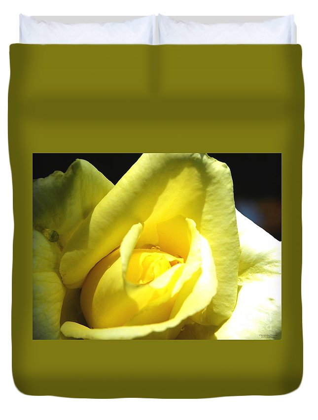Rose Duvet Cover featuring the photograph Yellow Rose For Love by Tisha Clinkenbeard
