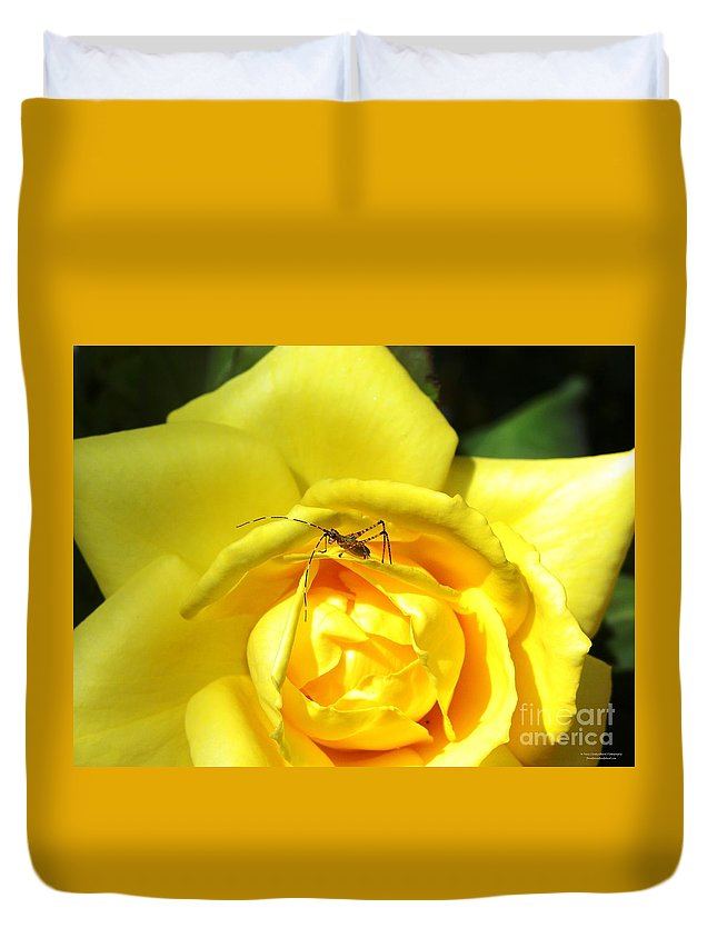 Yellow Rose Duvet Cover featuring the photograph Yellow Rose Visitor by Tisha Clinkenbeard