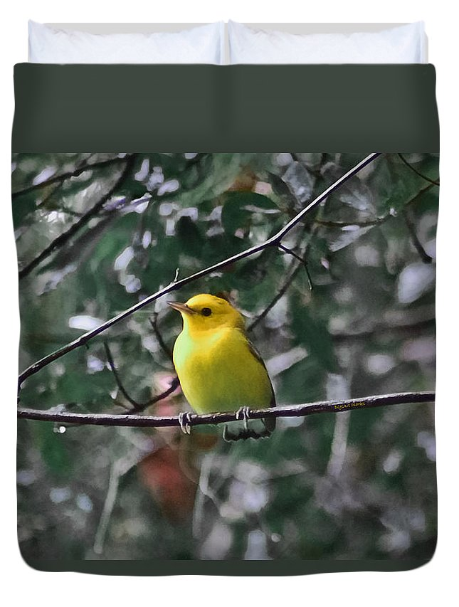 Bird Duvet Cover featuring the photograph Yellow Songbird by DigiArt Diaries by Vicky B Fuller