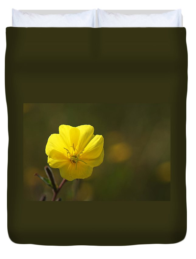 Yellow Duvet Cover featuring the photograph Yellow Wild Flower by Chris Day