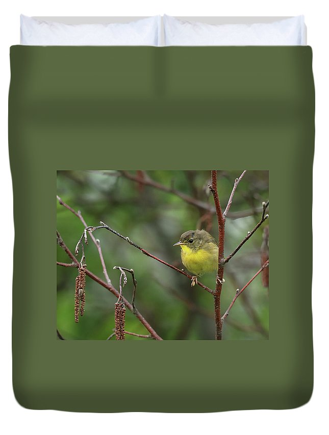 Nature Duvet Cover featuring the photograph Yellowthroated Warbler by Susan Capuano