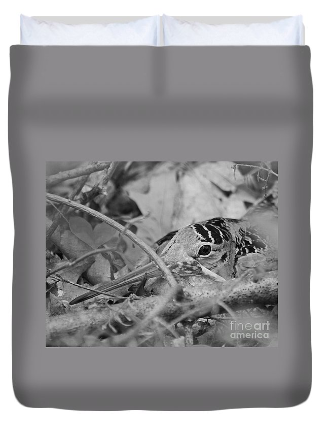 Woodcock Duvet Cover featuring the photograph You Don't See Me Black N White by Lloyd Alexander
