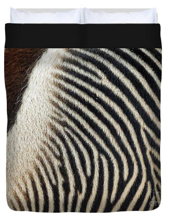 Zebra Caboose Duvet Cover featuring the photograph Zebra Caboose by Methune Hively