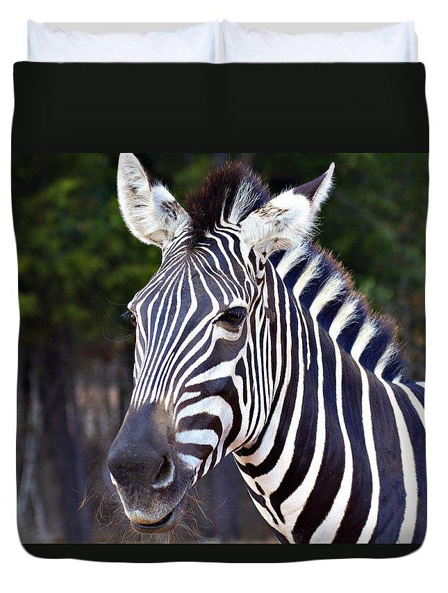 Zebra Duvet Cover featuring the photograph Zebra Symmetry by Douglas Barnard
