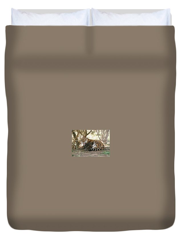 Ground Duvet Cover featuring the photograph      Maternity by Leandro Sebastian  Marquez